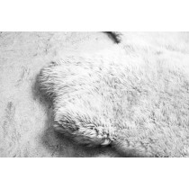 Tapete de Lã Sheep